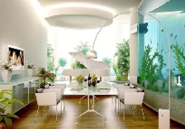 Gợi ý hay thu hút sinh khí cho ngôi nhà