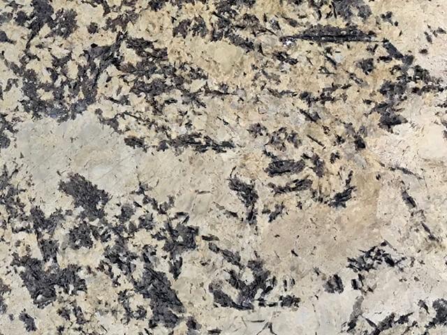 Slender Cream Granite - (Brazil)